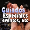 Excursiones: Eventos, especiales, limitadas